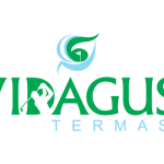 Logo do Vidagus Termas