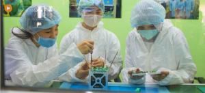 Dia Internacional das Mulheres e Raparigas na Ciência